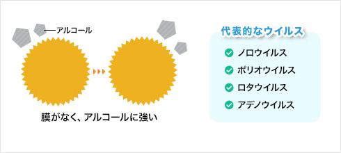 ノンエンベロープウイルスの構造