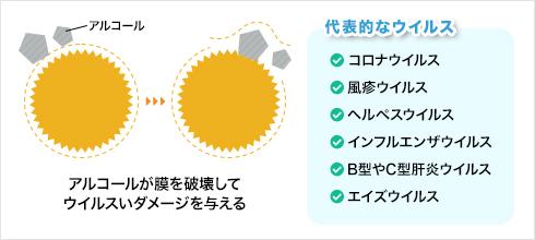 エンベロープウイルスの構造